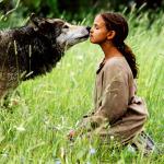 WolfSummer1