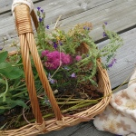 Dabas veltes un ziedi vakara Ugunsrituālam