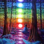 chakra-meditation-in-the-redwoods-laura-iverson-medium