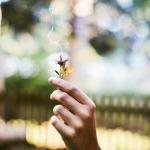 puķes-aromāts