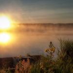 In-morning-fog