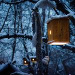 winter_evening_by_diacita-d4rnvgp