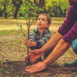 britax-eco-friendly-blog