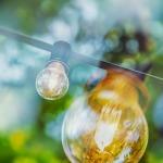 light-bulb-3576097_1920