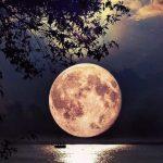 Moon-2-1024x682-e1527510620876