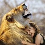 lion-3012515_960_720