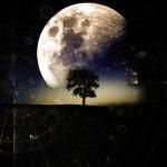 moon-2855866_960_720