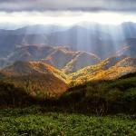 autumn-2183489_960_720