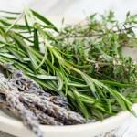 herbs-